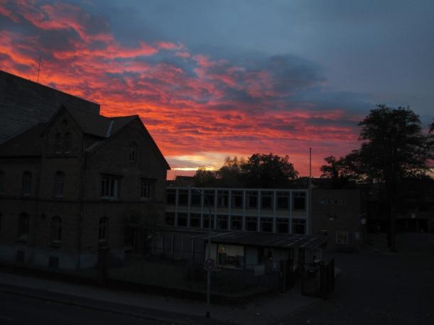 Blick aus dem Fenster 04.11.2014