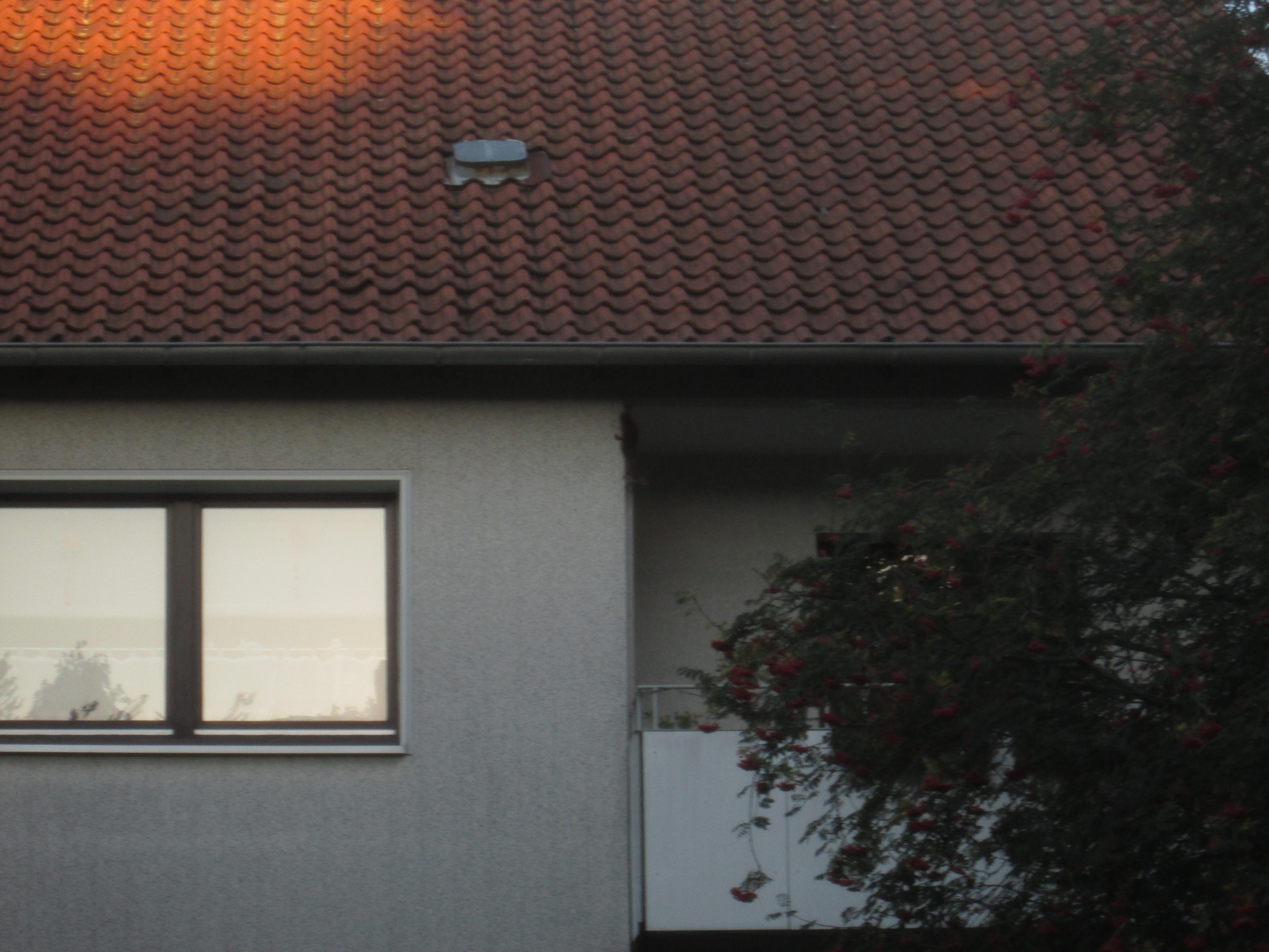 Fenster | RainerSeiner