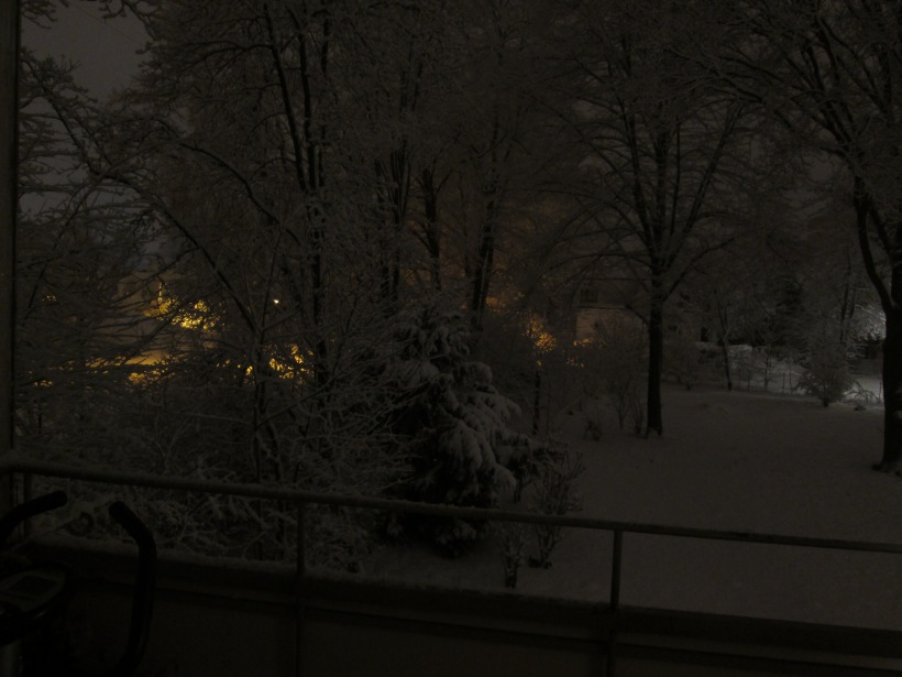 160119_011_Winternacht_LS