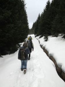 170218_029f_kraefteschonung_winterwanderung