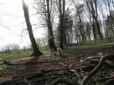 Meine Quarkbeine zum Urbanen Frühlingsanfang im Wald...