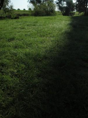 Feuchte Wiese (die Ostsee?)