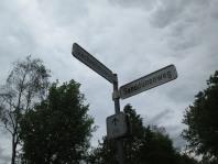Standort Feldsalat + Knoblauchsrauke